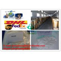 Muscle Building Injectable Anabolic Steroid Stanozolol Steroid CAS 10418-03-8 Manufactures