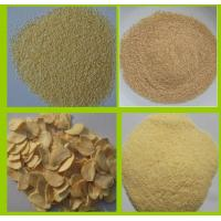 DEHYDRATED GARLIC FLAKES 2.2MM Manufactures