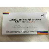 Ampicillin Sodium Powder Injection 1.0g Antibiosis Drugs 3 Years Expiration Date Manufactures
