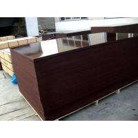 film faced plywood linyi China Manufactures