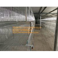 Buy cheap Poultry Farm Silver Hot-dip Galvanized Sheet Simple H Frame Automatic Broiler Chicken Cage System with 108-144 Birds from wholesalers