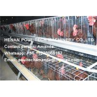 Selling Silver Hot Galvanized Steel Cage Battery Cage/Coop Hybrid Chicken Cage/Coop for Poultry&Livestock Farming Manufactures