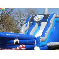 0.55mm PVC Giant Inflatable Slide For Water Games / Blow Up Water Slide For Toddlers Manufactures