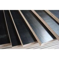 Poplar Core Film Faced Plywood High Strength With Smooth Surface Treatment Manufactures