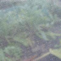 China Fruit Trees Protection Insect Mesh Netting Anti Aphid Mesh Net High Tensile Strength on sale