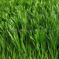 50mm Artificial Grass for Football Field (DSG85501715) Manufactures