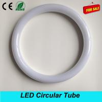 Distributor T9 300mm 18W led circular tube light replacement 40W traditional light Manufactures