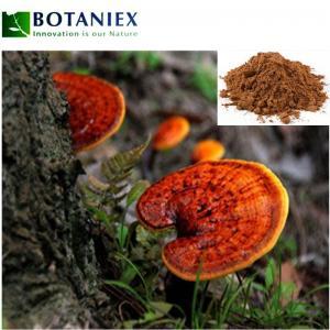 Reishi Mushroom Extract Powder Ganoderma Lucidum Polysaccharides Powder Ganoderma Lucidum Manufactures