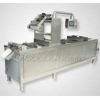 DZL Automatic Vacuum Packaging Machine