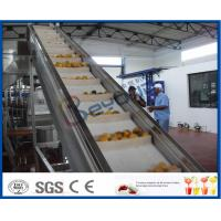 2TPH ~ 20TPH SUS304 Mango Processing Line With 2kg Cans Filling Machine Manufactures