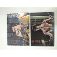 Multicolor Printed 3D Lenticular Postcards , Personalised 3d animated pictures Offset UV Prining Manufactures