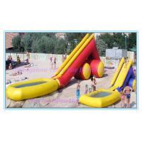 Inflatbale Watertoy: Hot Selling Funny Inflatable Slide (CY-M2135) Manufactures