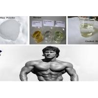 CAS 434-07-1 Muscle Gain Oral Anabolic Steroids Anadrol Oxymetholone For Bulking Cycle Manufactures