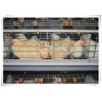 Silver Galvanized Steel Cage Battery Layer Breeder Chicken Cage/Coop for Chicken Farming Manufactures