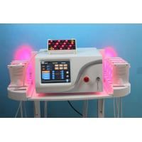 Medical Grade Salon Aesthetic Laser Machine For Fat Removal Dual Wavelength Manufactures