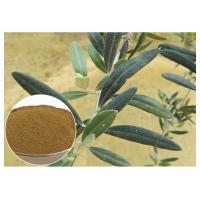 Anti Oxidation Natural Olive Leaf Extract Hydroxytyrosol 20% Solvent In Water Manufactures