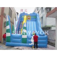 Commercial Outdoor Childrens Inflatable Slide For Amusement Park , 6M X 4M X 5M Manufactures