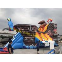 pirate water slide for pool Manufactures
