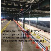 Poultry Farming Silver Steel Automatic Broiler Chicken Deep Litter System Manufactures