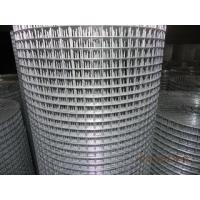 electric galvanized welded wire mesh supplier Manufactures
