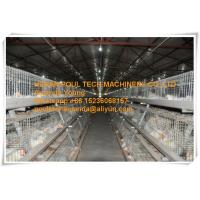 Quality Poultry Farm Galvanized Steel Sheet Silver Automatic Broiler Chicken Cage  with Feeding&Drinking System for sale