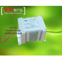 Ballasts For Bulb and Olive Type Induction Lamps LCL-PB Manufactures