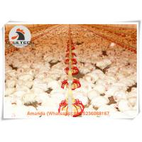 Poultry Farm Hot Galvanized Nipple Drinker & Feeding System for Broiler Chicken Floor Raising System in Chicken House Manufactures