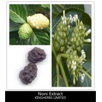 China Noni Extract 4-1, Fine Brown Powder Manufactures