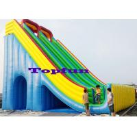 High Ladder 12mH Inflatable Slide Amazing Design For Amusement Games Manufactures