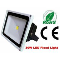 China Waterproof 30w Exterior Led Flood Lights Security Die Casting Aluminium Alloy on sale