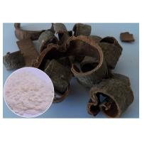 Magnolia Bark Antifungal Plant Extracts Protecting Liver CAS 528 43 8 HPLC Test Method Manufactures