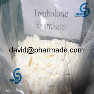 China Trenbolone Enanthate Finaplix Powder Trenbolone Acetate on sale