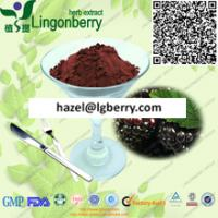 China Natural black cherry extract powder on sale