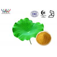 Nelumbo Nucifera Leaves Extract Powder , Pure Natural Botanical Extracts Manufactures