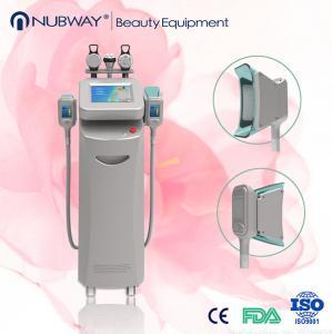 Cryolipolysis slimming machine Manufactures