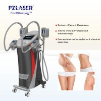 CE Cool Tech Cryolipolysis Fat Freeze Slimming Machine For Weight Loss Manufactures