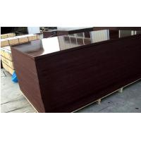 Brown Phenolic Film Faced Plywood Board water-proof Manufactures