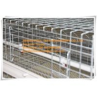 Quality New Steel Sheet Silver White Poultry Farming Automatic Small Chicken Cage System with Feeding&Drinking System for sale