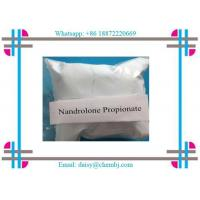 Nandrolone Steroid  Propionate Nandrolone 17-propionate for Effective Bodybuilding CAS 7207-9 2-3 Manufactures