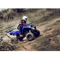 Blue 250CC Utility ATV Quad Bike 4 Wheel , Five Speed With Reverse Manufactures