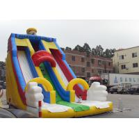 Durable PVC Tarpaulin Water Slide For Kids , Giant Inflatable Slide For Rental Business Manufactures