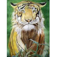 China high quality comic book printing service on sale