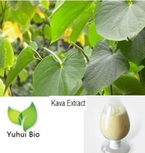 Kava Root Extract,kava extract,kava extract powder,anti depression, Kavalactones Manufactures