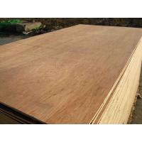 packing plywood / commercial plywood / furniture plywood Manufactures