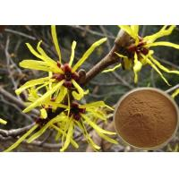 Antipruritic Tannin Hamamelis Virginiana Extract , Witch Hazel Extract For Hair Color Protection Manufactures