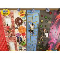 Freestanding Plastic Rock Climbing Wall , Safe Kids Outdoor Climbing Wall Manufactures