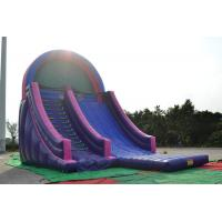 Customized Purple Children Inflatable Water Slides , 0.55mm PVC Tarpaulin Manufactures