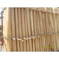 A Grade Birch Rotary Cut Veneer With Thickness 0.2mm - 0.6mm Manufactures