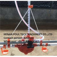 Chicken Farming Silver Steel Automatic Broiler Deep Litter System with Feed Pan&Drinking System Manufactures