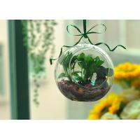 Sphere Shape Hanging Borosilicate Glass Candle Holder Low MOQ